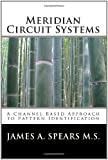 Meridian Circuit Systems: A Channel Based Approach to Pattern Identification