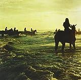 Holy Fire [VINYL] Foals