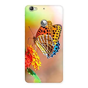 Beautiful Queen Butterfly Back Case Cover for LeTV Le 1s