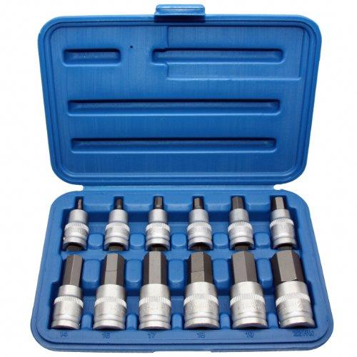 12-x-Kraft-Innensechskant-6-kant-Schlssel-fr-INBUS-Schrauben-Steckschlsseleinsatz-Schraubenschlssel-Einsatz-Gre-5-22-mm-12-Antrieb-Chrom-Vanadium-Stahl