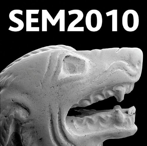 Historical Technology, Materials And Conservation: Sem And Microanalysis