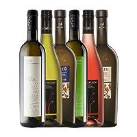 中部イタリア産 白ワイン ロゼワイン 6本 セット 750ml x 6本