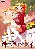 神のみぞ知るセカイ ROUTE 2.0 [DVD]