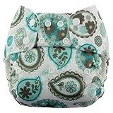 Blueberry Econappi Pocket Diaper, Paisley