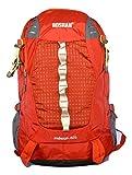 Roshan Nylon Multicolour Unisex Laptop Backpack (3202)