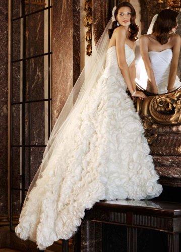 David's Bridal Wedding Dress: Taffeta Ball Gown