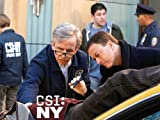 Csi: NY: Nine Thirteen