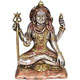 Exotic India Bhagawan Shiva - Brass Statue - B00RKDNOGC