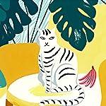L'histoire de la chatte qui n'était pas celle que l'on croyait (Transfert 15) |  slate.fr