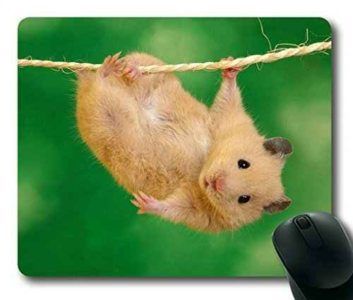 Cute Hamster Rectangle Mouse Pad,Gaming Mouse Pad by Lilyshouse