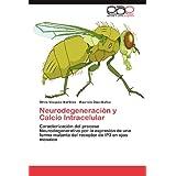 Neurodegeneraci N y Calcio Intracelular: Caracterización del proceso Neurodegenerativo por la expresión de una...