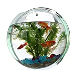 Mini ecological aquarium Walled fish tank Cube Aquarium Kit for home and Office decoration (design1, 6.49inch)