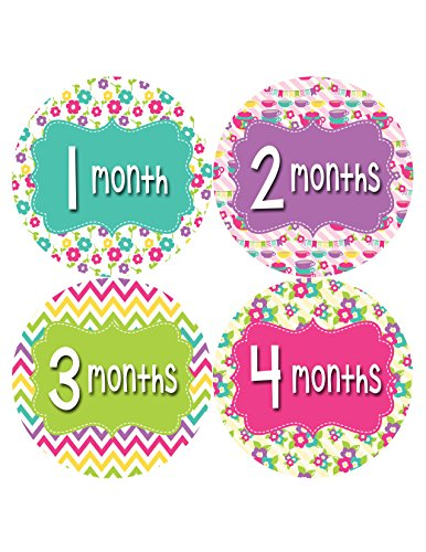 Months in Motion 403 Monthly Baby Stickers Girl Monthly Photo Milestone Month