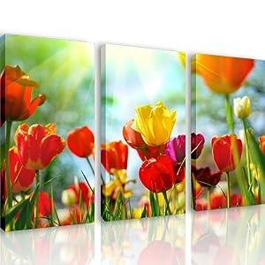 S23 tulipani 3 quadri moderni 120x80 cm stampa digitale su tela ideale per arredo cucina - Quadri da appendere in bagno ...