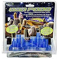 DuneCraft Odd Pods Cacti Growing Kit