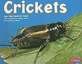 Crickets[CRICKETS][Paperback]