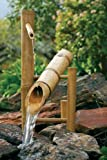 Bamboo Accents 20 in. Rocking Fountain Spout and Pump Kit