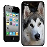 Fancy A Snuggle 'Alaskan Malamute Dog' Clip On Back Cover Hard Case for Apple iPhone 4/4S