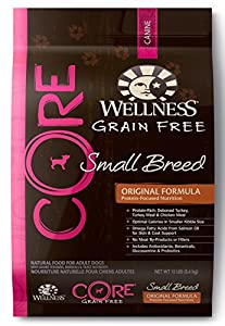 Wellness CORE Natural Grain Free Dry Dog Food, Small Breed Health Turkey & Chicken Recipe, 12-Pound Bag
