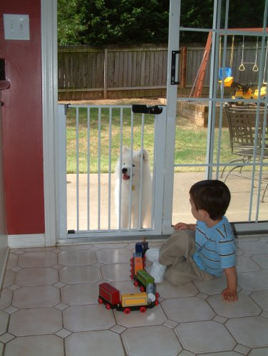 Cardinal Gates Lock-n-Block Sliding Door Gate, 30.5 x 24-Inches, White