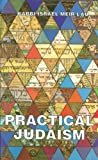 img - for Practical Judaism book / textbook / text book