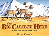 img - for The Big Caribou Herd: Life in the Arctic National Wildlife Refuge book / textbook / text book