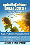 img - for Meeting the Challenge of Bipolar Disorder: Self Help Strategies that Work! book / textbook / text book