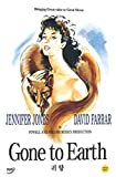 Gone to Earth (1950) Jennifer Jones, David Farrar [All Region, Import]