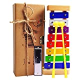 SMALL FISH Xylophone Kids: Best Holiday/Birthday DIY Gift Idea Your Mini Musicians, Musical Toy Child Safe Mallets, Perfectly Tuned Instrument Toddlers, Musical Cards Harmonica Included