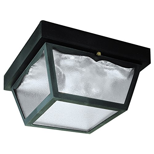 Angelo Brothers 66823  2-Light Porch Clear Glass Panel (Angelo Bros Company compare prices)