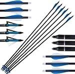 Fibreglass Arrows + Broadheads + Fiel...