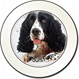 Cocker Spaniel in Snow 'Yours Forever' Car Tax Disc Holder New Animal, Ref:AD-SC23yT