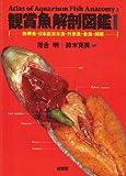 観賞魚解剖図鑑 (1)