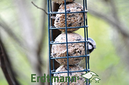 Erdtmanns-Suet-Balls-no-nets-in-Tub-Pack-of-35