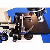 AmScope B100B-MS Digital Compound Binocular Microscope 40X-2000X Magnification Brightfield Tungsten Illumination Abbe Condenser Mechanical Stage