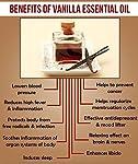 Ambrosial Fragrances of Heaven Ambrosial Vanilla Essential Oil 100% Natural Organic Uncut Undiluted