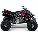 Senge Graphics All Years Can-Am DS 90, Wildfire Pink Graphics Kit