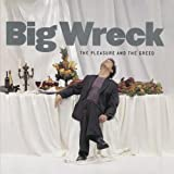 The Pleasure and the Greedby Big Wreck