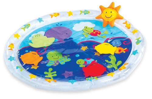 Read About Earlyears Fill n Fun Water Mat Toy
