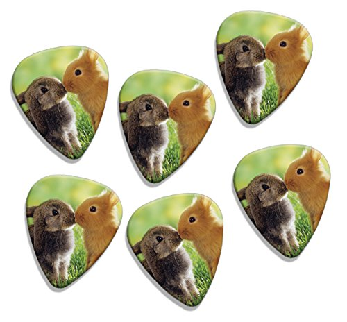 rabbits-kissing-cute-6-x-loose-logo-guitar-picks-gd