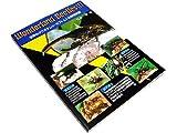 世界のクワガタムシ・カブトムシの飼育記録 (wonderland Beetles(1))