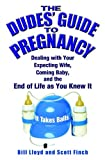 Books - Dude's Guide to Pregnancy - NEW