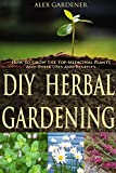 DIY Herbal Gardening - How To Grow The Top Medicinal Plants And Their Uses And Benefits  (Herbal Gardening, Medicinal Plants, DIY Herbal Gardening, Herbal Cure, Homesteading, Herbal Medicines)