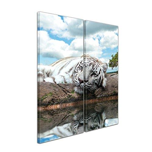 """Bilderdepot24 Leinwandbild """"White Tiger"""" - 70x50 cm 1 teilig - fertig gerahmt, direkt vom Hersteller"""