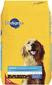 PEDIGREE Adult Complete Nutrition Dry Food for Dogs