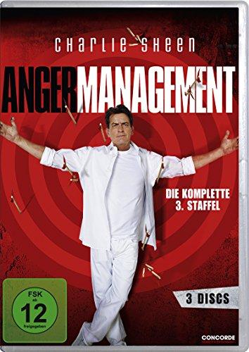 Anger Management - Die komplette 3. Staffel [3 DVDs]