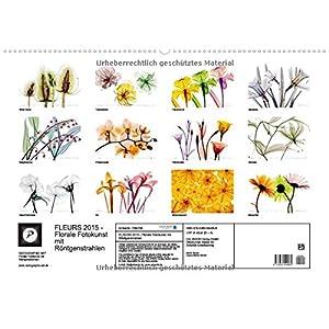 FLEURS 2015 - Florale Fotokunst mit Röntgenstrahlen (Wandkalender 2015 DIN A2 quer): Jenseits des L