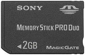 Sony - Carte Memory Stick (MS) Pro Duo MagicGate - Carte Mémoire Flash - 2 Go