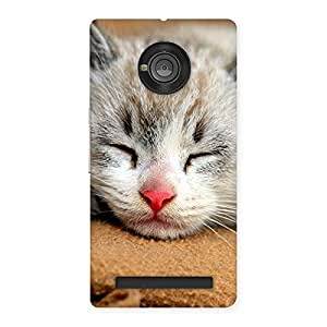 Sleeping Cat Multicolor Back Case Cover for Yu Yuphoria