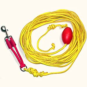 Amazon.com : Outdoor Drag Line / Long Leash for Dogs with ...